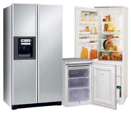 ремонт холодильник дом